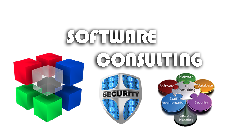 software-consulting-computer-services